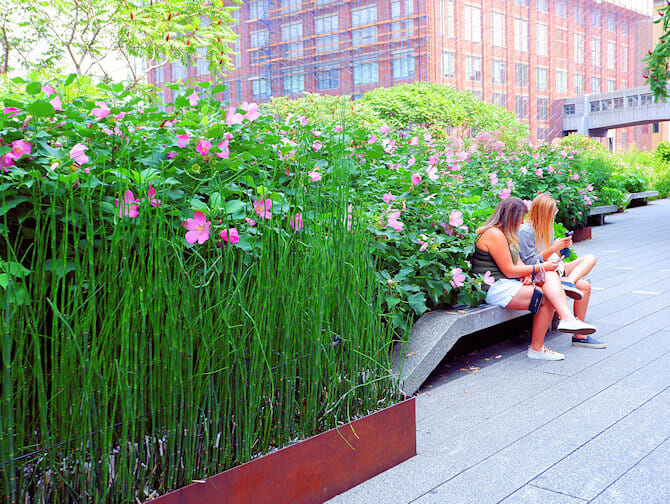 High Line Park in New York - Wandelen
