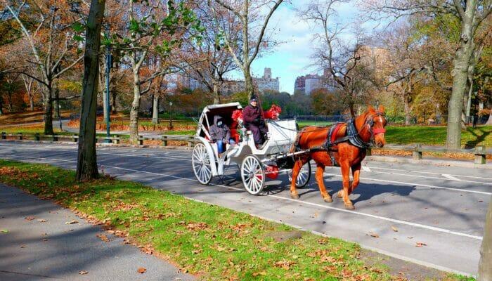 Per koets door Central Park