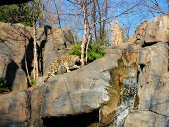 Central Park - Central Park Zoo