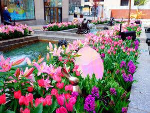Pasen in New York
