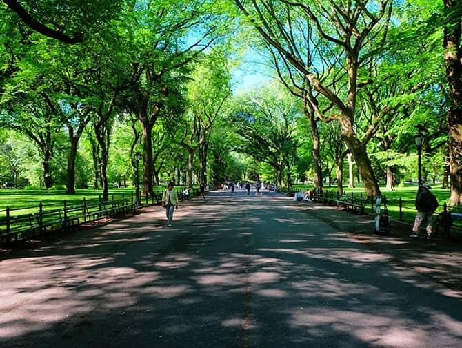Labor Day in New York - Wandelen in Central Park