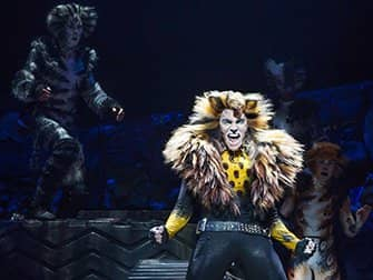 Cats op Broadway Tickets - Solo