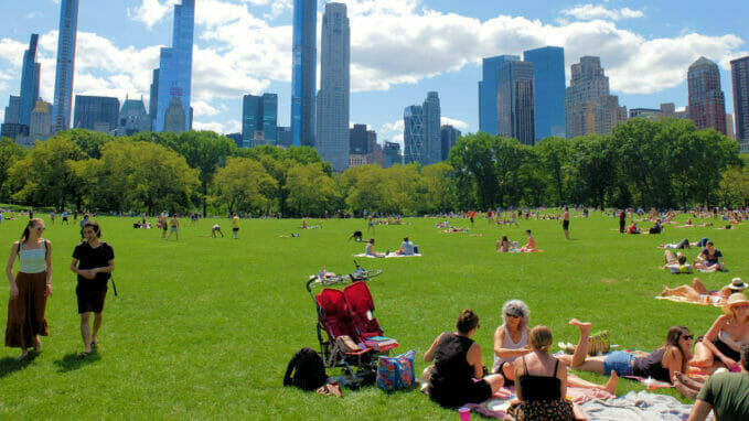 Great Lawn Central Park – Zoom
