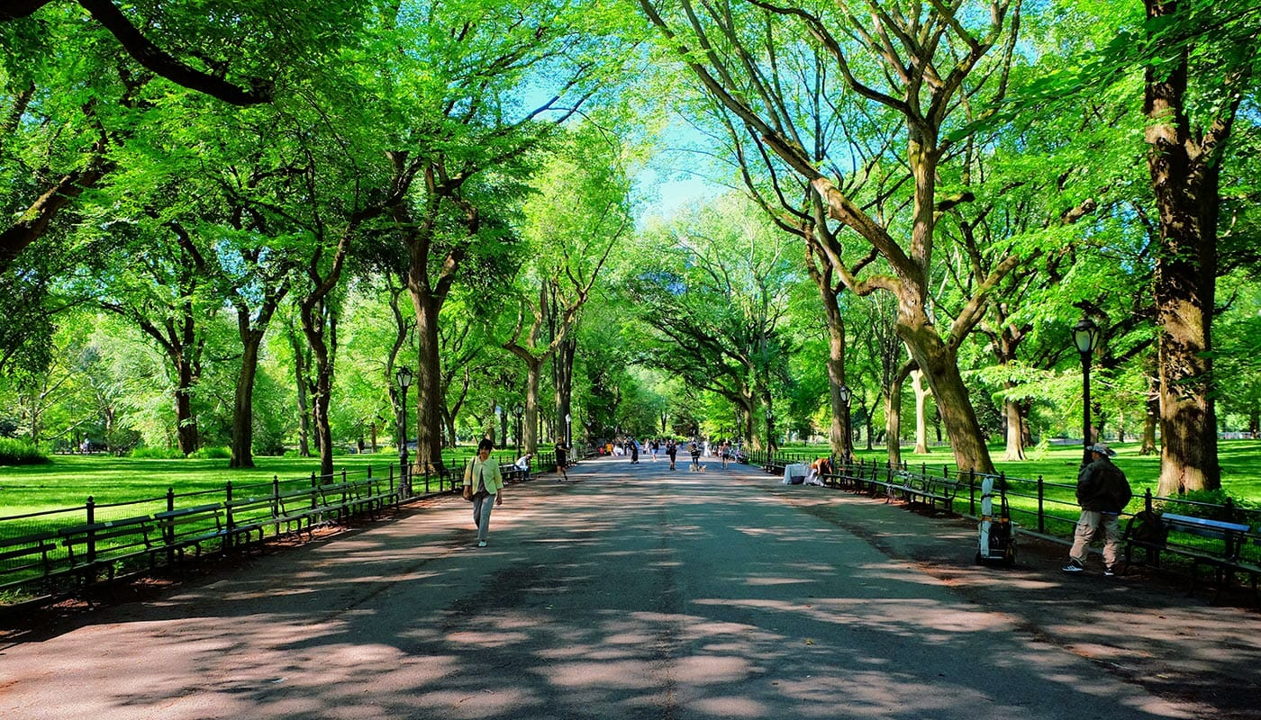 Moederdag in New York - The Mall in Central Park