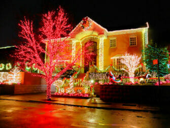 Private Christmas Dyker Heights Tour