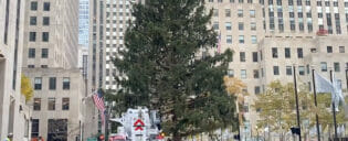 Erics Blog - Rockefeller Christmas Tree