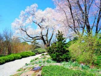 Botanical Gardens in New York New York Botanical Garden in The Bronx