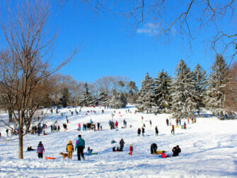 Sneeuw in New York - Central Park
